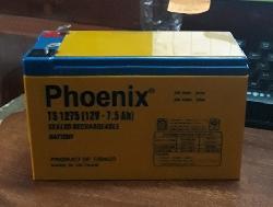 Ắc quy Phoenix 12V-7.5Ah TS1275