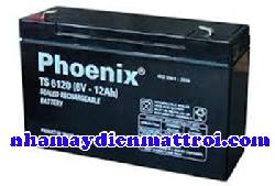 Ắc quy Phoenix 6V-12Ah (TS6120)