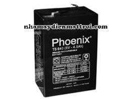 Ắc quy Phoenix 6V-4.5Ah (TS645)